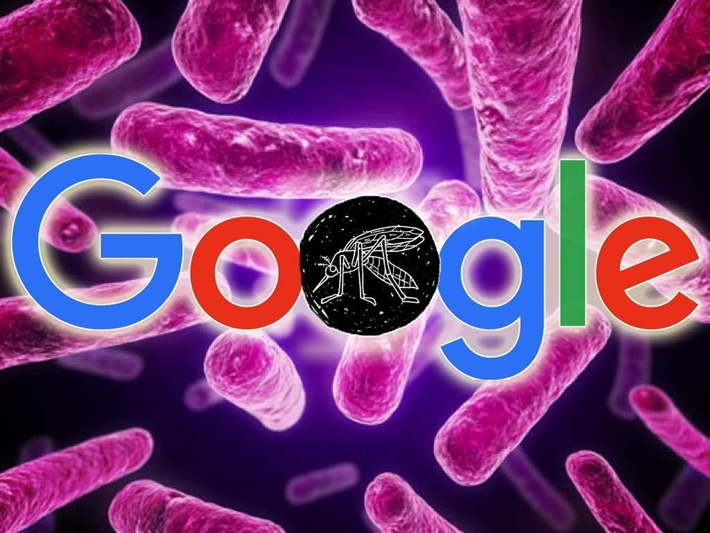 google dono millon dolares zika