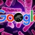 Google dona un millón de dólares para el Zika